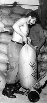 Che, promotor del trabajo voluntario en Cuba.