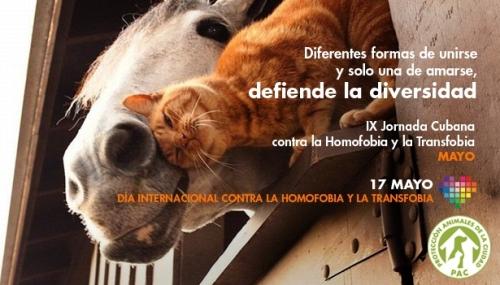 postal-pac-jornada-contra-homofobia