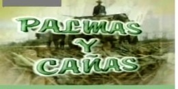 260px-Palmas_y_cañas